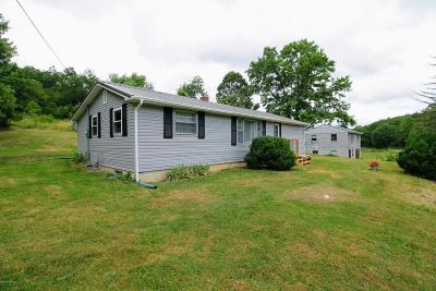 Pearisburg Single Family Home For Sale: 2874 Eggleston Road