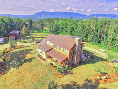 Pearisburg Single Family Home For Sale: 2631 Guinea Mountain Rd