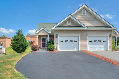 Christiansburg Condo/Townhouse For Sale: 1045 Elk Dr