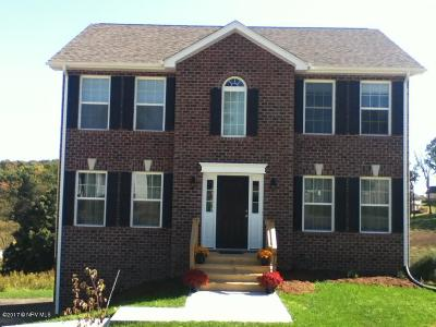 Blacksburg Single Family Home For Sale: 1609 Bold Springs Cir