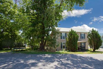 Pulaski Multi Family Home For Sale: 224 Henry Avenue