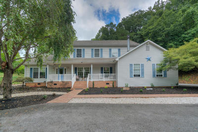 Giles County Single Family Home For Sale: 255 Windy Hill Rd