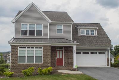 Blacksburg Single Family Home For Sale: 904 Willard Dr SE