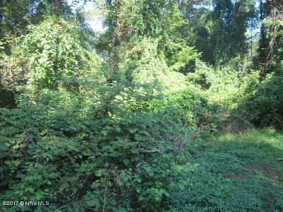 Christiansburg Residential Lots & Land For Sale: 001 Robin Hood Lane