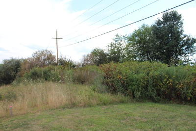Dublin Residential Lots & Land For Sale: 5405 Cougar Trail