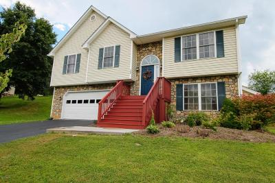 Christiansburg Single Family Home For Sale: 705 Independence Blvd NW