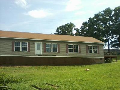 Giles County Single Family Home For Sale: 109 Oakview Ln