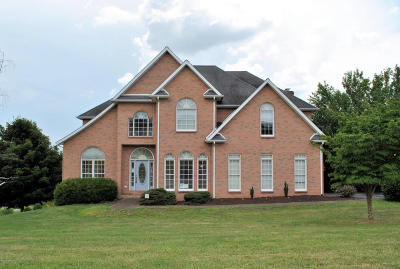 Christiansburg Single Family Home For Sale: 1165 Falcon Run