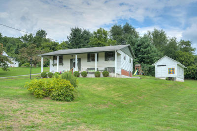 Giles County Single Family Home For Sale: 208 Thunder Road