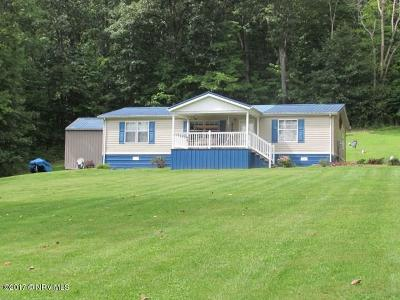 Wythe County Single Family Home For Sale: 800 Radio Drive