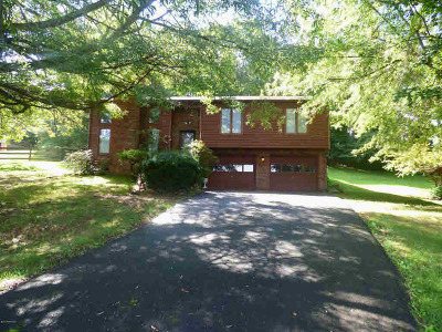Wythe County Single Family Home For Sale: 620 Whispering Pines Road