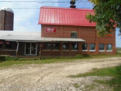 Pulaski Commercial For Sale: 4241 Lee Highway