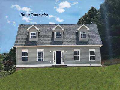 Blacksburg Single Family Home For Sale: 1605 Bold Springs Cir