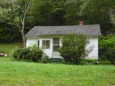 Giles County Single Family Home For Sale: 184 Williams St