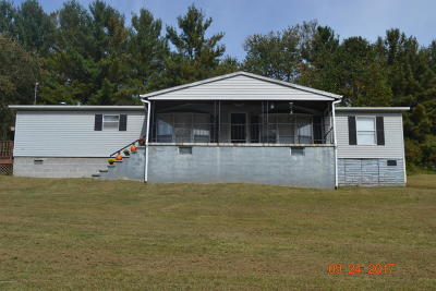 Giles County Single Family Home For Sale: 419 Sinking Creek Rd