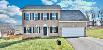 Blacksburg Single Family Home For Sale: 110 Oak Meadow Ln