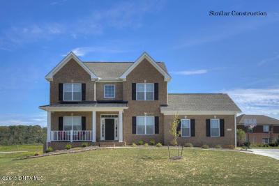 Radford Single Family Home For Sale: 6210 Herons Landing Dr