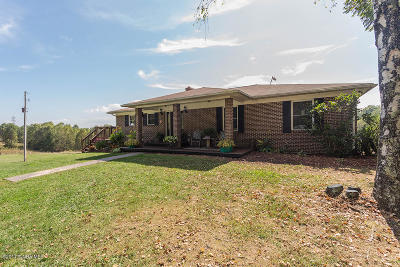 Giles County Single Family Home For Sale: 758 Staffordsville Hill Rd