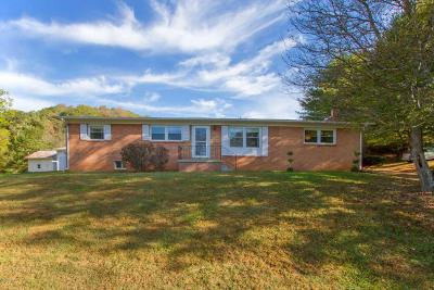 Giles County Single Family Home For Sale: 827 Blue Grass Trl