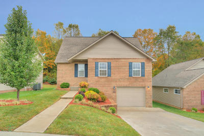 Montgomery County Single Family Home For Sale: 155 Alexa Ln