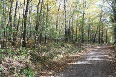 Floyd VA Residential Lots & Land For Sale: $47,000