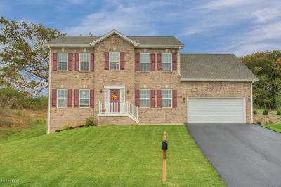 Christiansburg Single Family Home For Sale: 210 Aldwych Ave