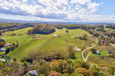 Residential Lots & Land Sold: 3063 Lowmans Ferry Road