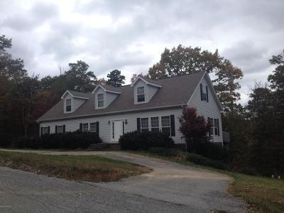 Blacksburg Single Family Home For Sale: 3520 Isabel Court
