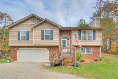 Pulaski County Single Family Home For Sale: 5460 Montgomery Hollow Rd
