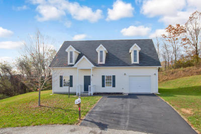 Montgomery County Single Family Home For Sale: 202 Wistaria Dr
