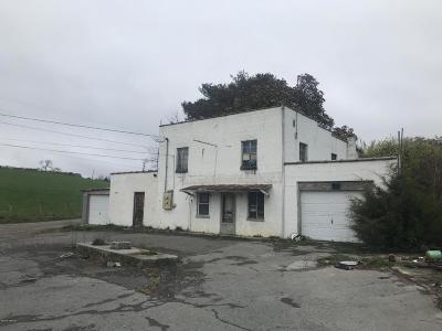 Radford Single Family Home For Sale: 7920 Little River Dam Road