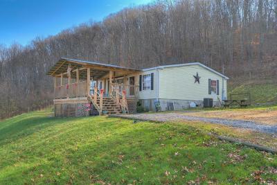 Giles County Single Family Home For Sale: 167 Burton Road
