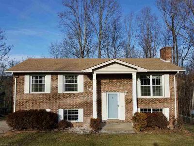 Christiansburg Single Family Home For Sale: 660 Black Bear Run Road
