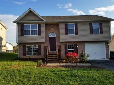 Christiansburg Single Family Home For Sale: 310 Sequoia Circle