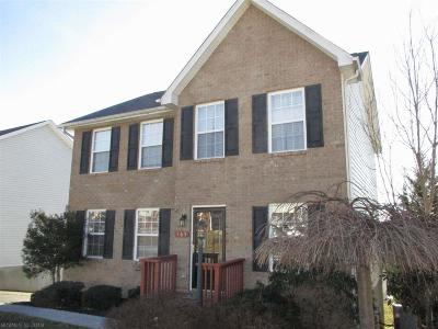 Christiansburg Single Family Home For Sale: 165 Wistaria Drive