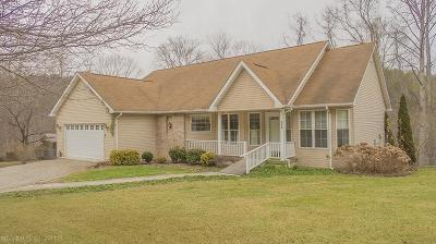 Radford Single Family Home For Sale: 269 Indian Valley Road