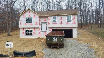 Montgomery County Single Family Home For Sale: 1048 St Clair Lane