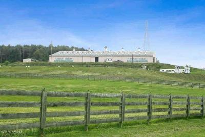 Christiansburg Farm For Sale: 1771 Flanagan Drive