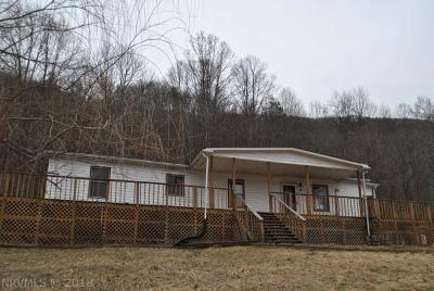 Giles County Single Family Home For Sale: 482 Conley Hollow Road