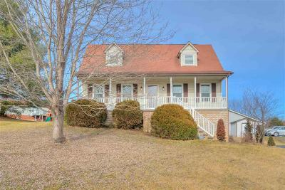 Christiansburg Single Family Home For Sale: 955 George Edward Viaduct