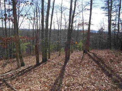 Christiansburg Residential Lots & Land For Sale: Lot 26 Riverwoof Estates Road