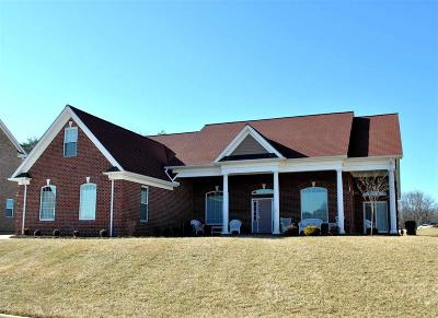 Radford Single Family Home For Sale: 6419 Teeth Of The Dog Drive