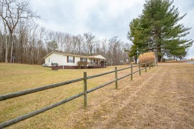 Dublin Single Family Home For Sale: 4476 Deer Place Place