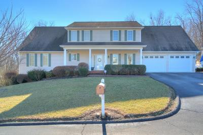 Christiansburg Single Family Home For Sale: 665 Dee Dee Drive