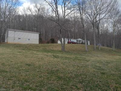 Giles County Single Family Home For Sale: 194 Elder Hollow Road