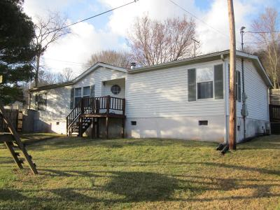 Wythe County Single Family Home For Sale: 186 Vineland Ln Lane