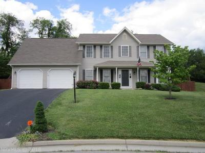 Christiansburg Single Family Home For Sale: 635 Cameo Ct Road