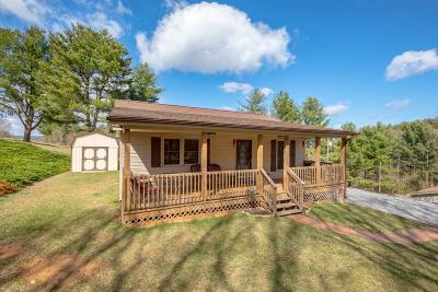Wythe County Single Family Home For Sale: 497 Barrett Mill Road
