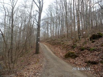 Giles County Residential Lots & Land For Sale: Lucado Hollow Road