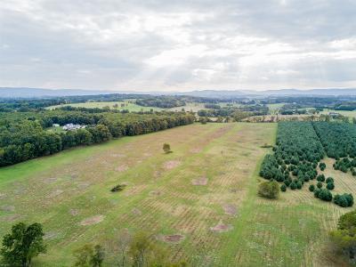 Dublin Residential Lots & Land For Sale: Tbd 50 Ac Bell Farm Road